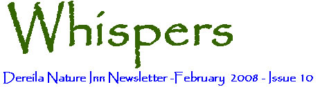 February 2008 - Whipsers - The newsletter of the Dereila Nature Inn - A cyber place for nature lovers.