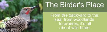 The Birder's Place