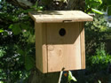 Traditional Nest Box