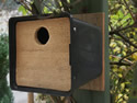 Plant Pot Nest Box