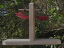 Wooden Berry Feeder