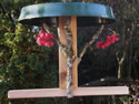 Simple Wooden Feeder
